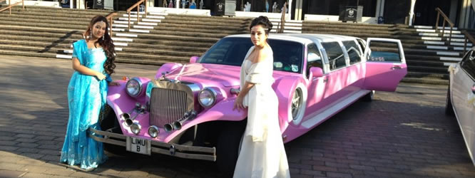 think pink excalibur wedding
